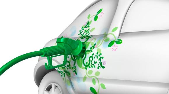 Quels sont les impacts des biocarburants sur l'écosystème ?
