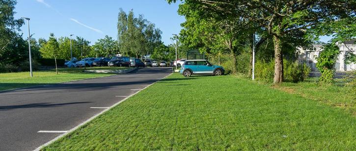 Le parking écologique : une solution en faveur de la biodiversité