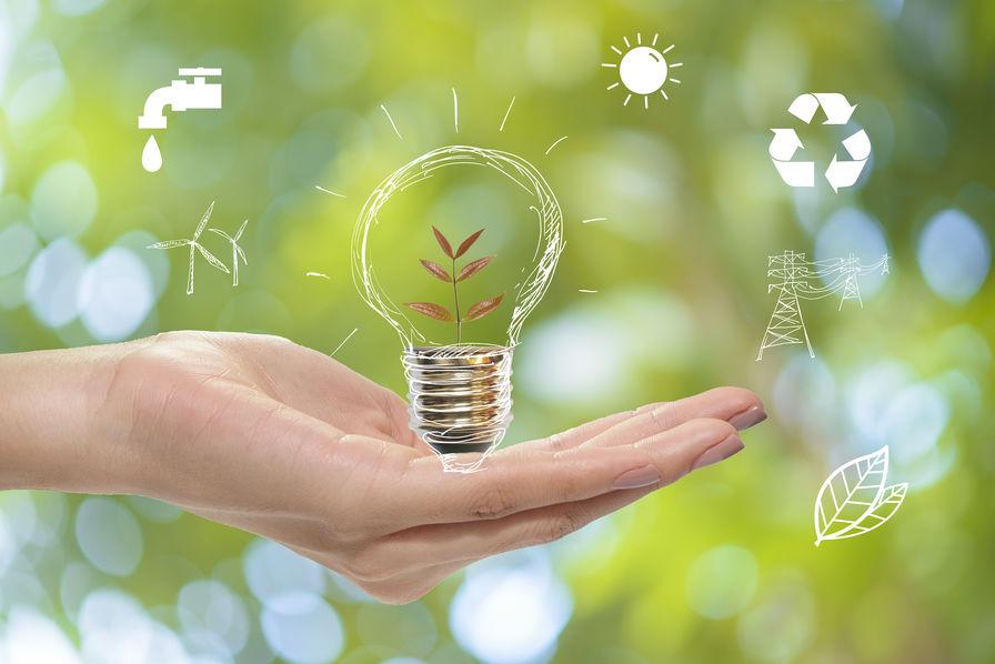 En quoi l'écologie est-elle importante ?