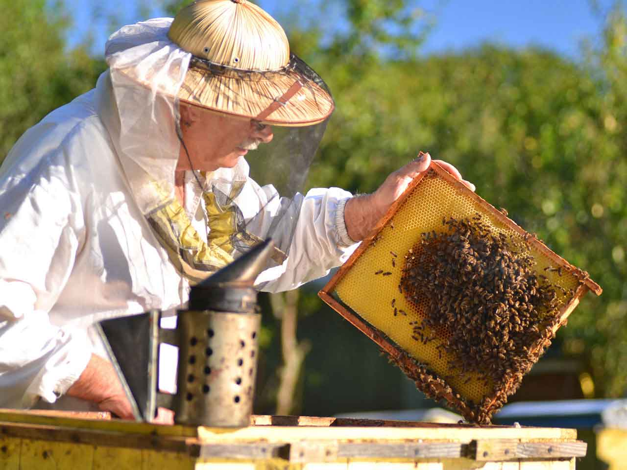 Le matériel nécessaire à un apiculteur