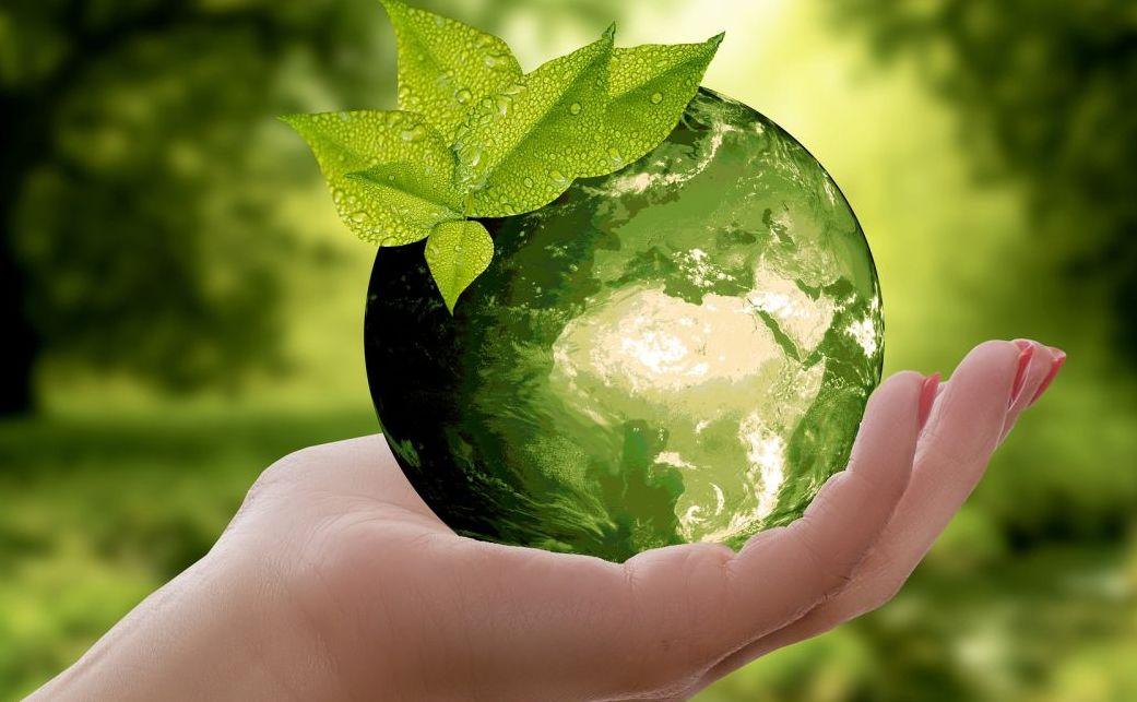 Préserver l'environnement pour la survie de l'humanité