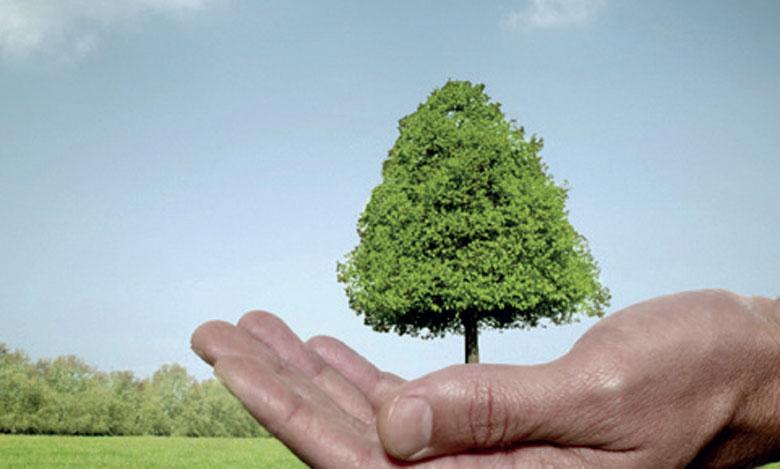 Pourquoi prioriser la protection de l'environnement ?