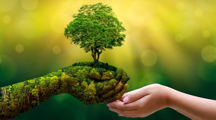 La raison principale pour devenir écolo